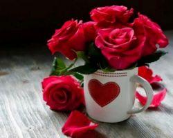 تنفس شروع زندگیست عشق قسمتی از زندگیست امادوست خوب قلب زندگیست@mahatbkhanon