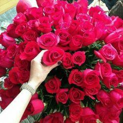  سلاااام دوستان عزیزم طاعات قبول ..این  گلهای زیبا   تقدیم به دوستانی     که شکفتن   هیچ گلی زیباتر از لبخند      آنها نیست   آخر هفته تون به شادی تقدیم به دوستانی ک هیچ وقت فراموش نمیشن همیشه به یادتون هستم ..شکوه