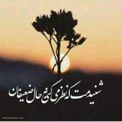 شنیدمت که نظر میکنی به حال ضعیفان❤ #اللهم_عجل_لولیک_الفرج