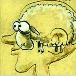 انسان ها نادان به دنیا مى آیند نه احمق, آنها توسط آموزش اشتباه ، احمق میشوند! بزرگترین دشمن سعادت و آزادى انسان ها دفاع کورکورانه از باورهاى غلط است. https://www.bazarazerbaijaan.com/
