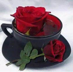 """   یک   استكان  چای!!!!!"""" مهمان منی...  کنار پنجرۀ بخارگرفتۀ قلبم، هنگام تنهایی...      چای رفاقت من... همیشه تازه دَم است !"""