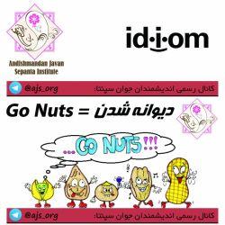 #idiom #اصطلاح #go_nuts #دیوانه_شدن #اندیشمندانه_انتخاب_کنید #choose_wisely @ajs_org