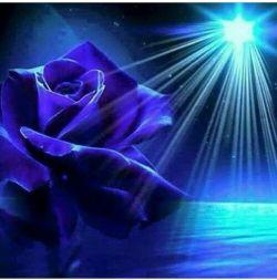 شب با تمام پیچیدگی اش ۰۰۰ چه ساده آرامش می بخشد ۰۰۰۰ کاش ما هم مثل شب باشیم۰۰۰۰۰ پیچیده اما آرام بخش دلها۰۰۰۰۰۰