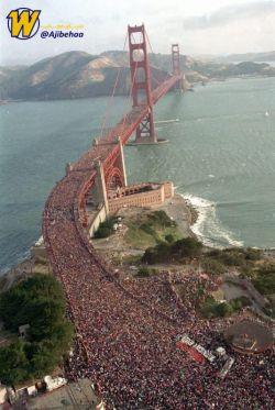 در ۲۴ می ۱۹۸۷، ۳۰۰ هزار نفر از مردم تصمیم گرفتند به مناسبت پنجاهمین سالگرد ساخت پل گلدن گیت از روی آن عبور کنند که این کار موجب شد این پل  ۲ متر نشست کند.