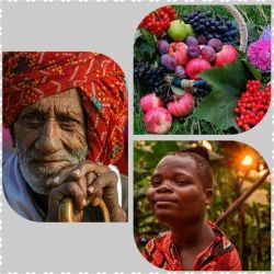 ♧قصه ظهر جمعه این داستان(میوه تلخ )♧خواجه به غلامش میوه ای داد...غلام چنان میوه را با رغبت میخورد...که خواجه گفت حتما میوه شیرینی است....کاش نصف آنرا خودم میخوردم....نصف میوه را خواجه گرفت....میوه تلخ بود....خواجه گفت این که تلخ است..و غلام اینگونه جواب داد...ادامه داستان کامنت.....؟(از دوستانی که قصه ها را دنبال میکنند سپاسگزارم امیدوارم از خواندن این قصه لذت ببرید )