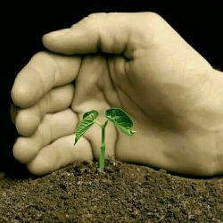 بزرگی روحت رامیان دست هایت پنهان کن...بزرگ بودن میان این مردم کوچک سخت است....