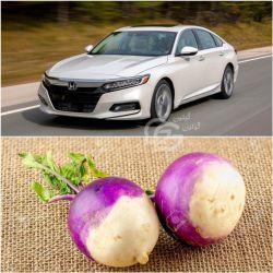 با ۲۵ هزار ریال شما میتونید یک کیلو شلغم تهیه کنید، با ۲۵ هزار دلار میتونید یدونه هوندا آکورد یکی از بهترین خودروهای دنیا رو تهیه کنید !  اینه تفاوت ریال و دلار !