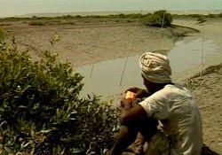 فیلم کوتاه پیر حرا  www.filimo.com/m/erRtb
