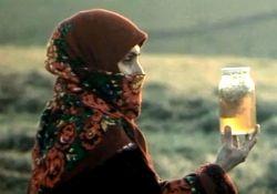فیلم کوتاه رنگین کمان  www.filimo.com/m/ilqQR