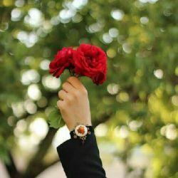 بس که در سینه تمنای گل روی #تـو بود.. سر هر حرف که وا گشت در او بـوی تو بود #سراج_الدین_علیخان #دلانـه #بح_بح  ساعــتم : ۱۴:۲۸ میباشد^_^