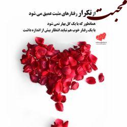 محبت از تکرار رفتارهای، مثبت عمیق می شود . همانطور که با یک گل بهار نمی شود با یک بار خوبی کردن هم نباید بیش از اندازه انتظار داشت.