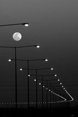 شب های هجر را گذراندیم و زنده ایم // ما را به سخت جانیِ خود این گمان نبود ...