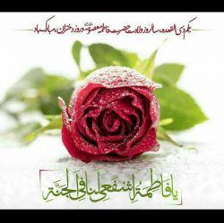 سلام وعرض تبریک...