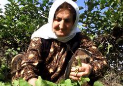 فیلم مستند غریب محله  www.filimo.com/m/JhyZa