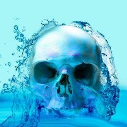 #مغز داخل یك کیسه مایع قرار دارد که مانع از برخورد آن به جمجمه می شود. در صورت کم آبی،مغز به جمجمه برخورد و باعث سردرد می شود نوشیدنى هاى انرژى زا و كافئین دار آب بدن را كاهش میدهند!