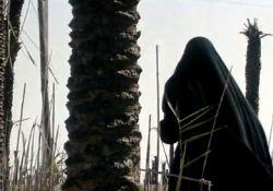 فیلم مستند کشتی نوح  www.filimo.com/m/bGUoF