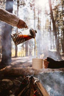 كاش زندگى همه ش اینجورى بود. یه چاى و یه جنگل و دور از همه...