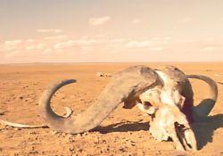 فیلم مستند «6 درجه ای که زمین را تغییر می دهند»        www.filimo.com/m/wPHsd