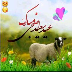 سلام خوبی دوست گلم عیدتون پیشاپیش مبارک ایامتان شاد  قربونی فرستادم برایتون ،التماس دعا
