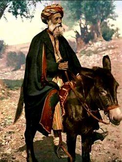 روزی پسر ملانصرالدین از او پرسید ::: پدر فقر چند روز طول می کشد ؟ ملا گفت ۴۰ روز پسرم ،،،،، پسر گفت ::: یعنی بعد از ۴۰ روز ما ثروتمند می شویم ؟ ملا گفت ::: نه پسرم ،،، عادت می کنیم ،،،،(سه.شنبه۳۱اَمرداد۲۵۷۷آریایی.تهران.عایشه)