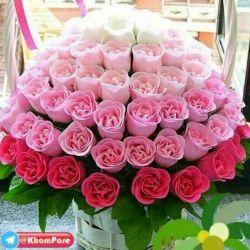 سلام خوبی دوست گلم صبح زیباتون بخیر و شادی ،عیدتونمبارک ،عیدی من به شما