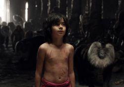 فیلم سینمایی کتاب جنگل  www.filimo.com/m/5KliU