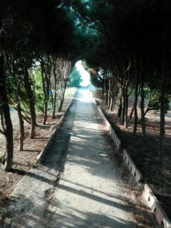محمود آباد