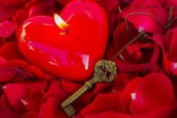 هرجا قلبی مهربان در حال تپیدن است.. آنجا بهشتی در حال روییدن است..  روزگارتان بهشتی... و قلب مهربانتان  همیشه در حال تپیدن باد...