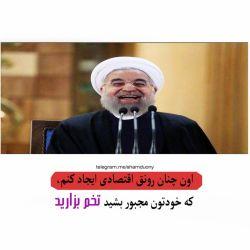 ✅ شماره 137 ✅ #بسم_الله_الرحمن_الرحیم ❤ علی برکت ا...