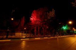 نورپردازی درختان میانی آتشگاه- بهار 97