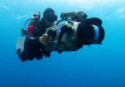 فیلم مستند «زندگی کوسه ها»                 www.filimo.com/m/eRGJj
