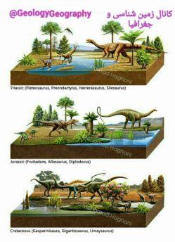 تصویرسازی از سه دوره ی تریاس ، ژوراسیک و کرتاسه به همراه نمونه هایی از گیاهان و دایناسور های مربوط به هر دوره .  عکس از محمد حقانی .