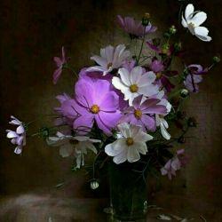 در گلدان زندگیت  گل عشق وپاکی گل دوستی وصداقت گل محبت ومهربانی رابکار،خواهی دید ،  خواهی دیدگلدانت ازهمه گلهای عالم خوشبوتر و زیباتر میشود
