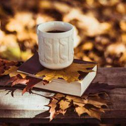 روزهای خوب آمدنی نیست آوردنی است با پاییز بنشین وچایت رو به سلامتی نفس کشیدنت بنوش زندگی را باید زندگی کرد....