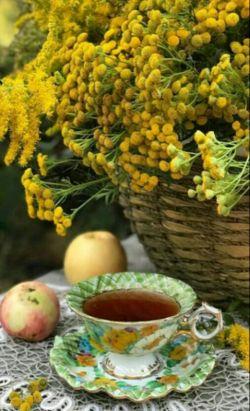 سلام خوبی دوست  گلم صبح زیباتون بخیر و شادی ،بفرما چایی تازه دمه شکوفه لبخند بر لبان تان آررزوی قلبی ماست پس بخند و شادمان باش