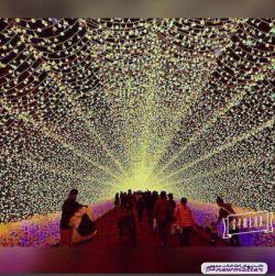 باغی در ژاپن با هزاران لامپ ال ای دی و طراحی منحصر بفرد با عنوان تونل روشنایی که مردم شهر برای تمدد اعصاب و تجدید قوای روانی به آنجا میروند
