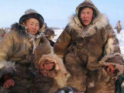 در قطب جنوب و شمال احتمال سرماخوردن نزدیک به صفر است و همچنین آنفولانزا گرفتن نیز ممكن نمى باشد!  به این دلیل كه در قطب ها به دلیل سرماى شدید ویروس ها امكان فعالیت را ندارند