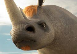 انیمیشن پیمان حیوانات  www.filimo.com/m/5pQm2