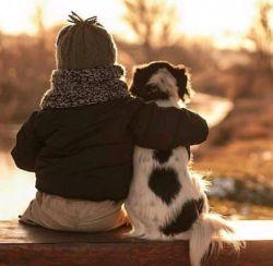 """زندگی حقِ تمام حیوانات است. نگذاریم آرزویِ حیوانات انقراضِ انسان باشد.  4 اکتبر ( ۱۲ مهر ) روز جهانی حیوانات گرامی♡  """"کمک کنیم تا جهانِ امروز جایی عادلانهتر برای تمامی حیوانات شود"""""""