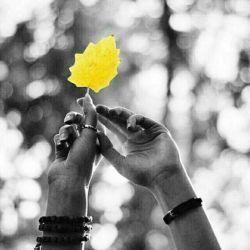 حواستان باشد ! اینجا خیلی زود ، دیر می شود ! جایی که همه چیز تاریخ مصرف دارد ؛ حتی آدم ها ، حتی رابطه ها ... این روز ها کسی حال و حوصله ای برایِ غرور و قهرهایِ طولانی ندارد ! باید مراعات کرد ، باید مراقب بود ، قبل از این که دیر شود ! آدم هایِ خوبِ زندگی تان را سنجاق کنید به دایره ی اولویت و حواستان ، و روابط عاطفی و شخصی تان را لحظه ای به حالِ خود رها نکنید ! به خاطرِ خودتان می گویم ... زمانه ی خوبی نیست ! مبادا چشم باز کنید و ببینید ، همان کسی که تا دیروز برایتان جان می داد ؛ غریبه ترین آدمِ دنیایتان شده !