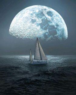 دلت آبیتر از دریا رفیقم به کامت شادی دنیا رفیقم الهی دائما چون گل بخندی شب و روزت خوش و زیبا رفیقم ♥