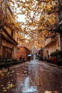 درود... بامداد آخرینِ روزِ مهرماهِ دوستان پرنشاط. اینجا، در آخرین روز مهر، اولین باران پاییزی، می بارد. به امید بارشهای خوب در سال آبی پیش رو  #بامداد_بارانی #اولین_باران_پاییزی #پایان_مهر