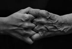 """عکاسی شماره سیزده       موضوع""""مرز""""       تاریخ: 9 آبان ماه       دوربین نیکون: D7100       لنز نیکور: 140-18میلیمتری       لوکیشن: تهران       عکس منتخب هفته از خانم فاطمه گوهری"""