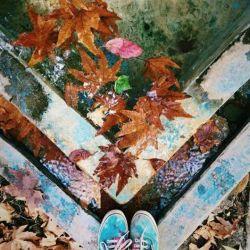 حالِ خرابِ حضرتِ پاییز مالِ من شأنِ نزولِ  سوره ی باران به نامِ تو ،   تنها نه من به مهر ِتو آذر به جان شدم دلتنگیِ دقایقِ  آبان به نامِ تو .....