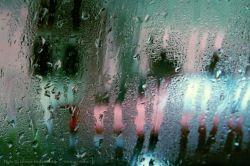 با او که گل آورده  دم شیشهی ماشین از لذت این شُرشُر باران  چه بگویم؟!