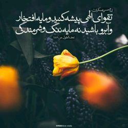 امام حسن عسکری (ع):. تقوای الهی پیشه کنید و مایه افتخار و آبروی ما باشید، نه مایه ننگ و شرمندگی ما.