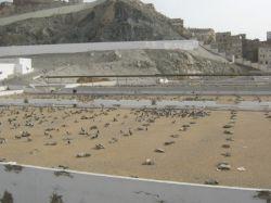 قبرستان ابوطالب در مکه مکرمه