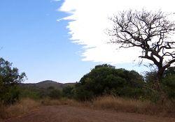 مجموعه مستند جاذبه های آفریقای جنوبی  www.filimo.com/m/17348