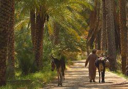 مجموعه مستند جاذبه های عمان  www.filimo.com/m/17342