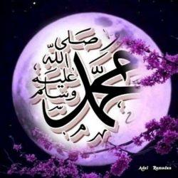 بر تو صلوات میفرستم و با تمام وجود بر تو درود میفرستم و  مشتاق تو هستم  میلاد حضرت محمد(ص) و امام صادق(ع) مبارک